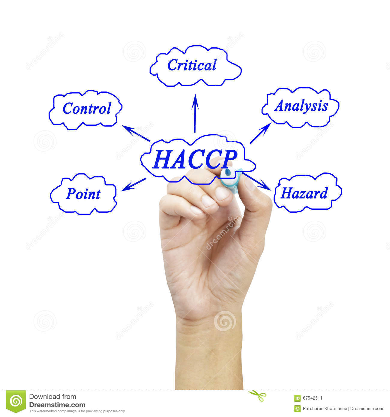 The meaning of haccp concept hazard analysis of critical control royalty free stock photo buycottarizona Choice Image