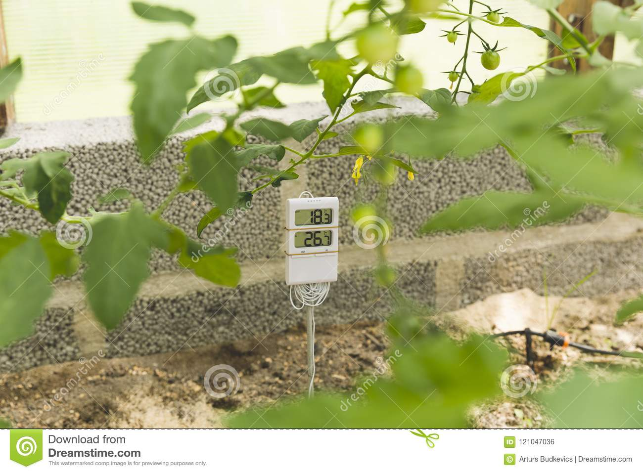 Measurement and control of temperature in the greenhouse