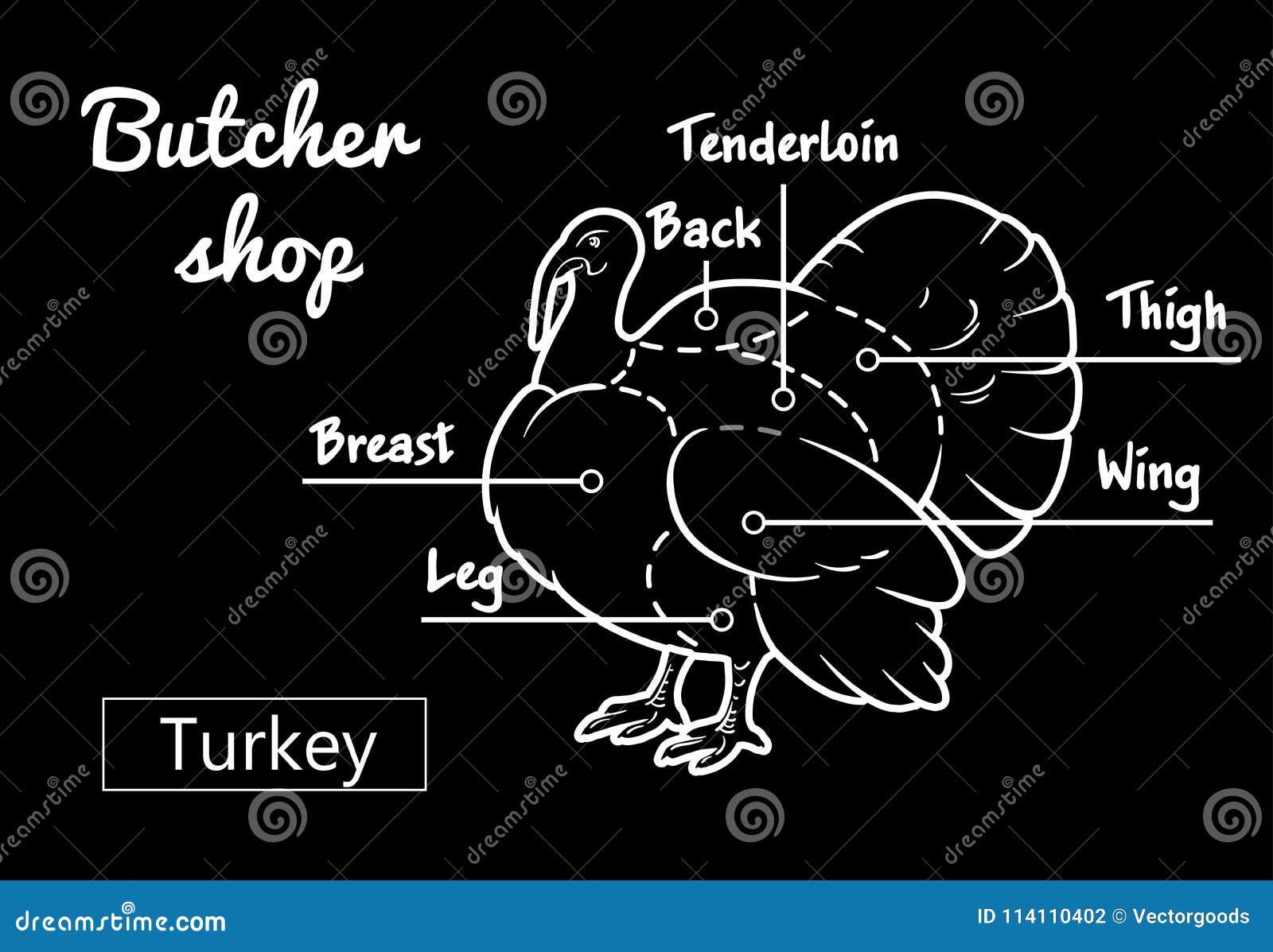 Vintage Turkey Diagram - Information Of Wiring Diagram •