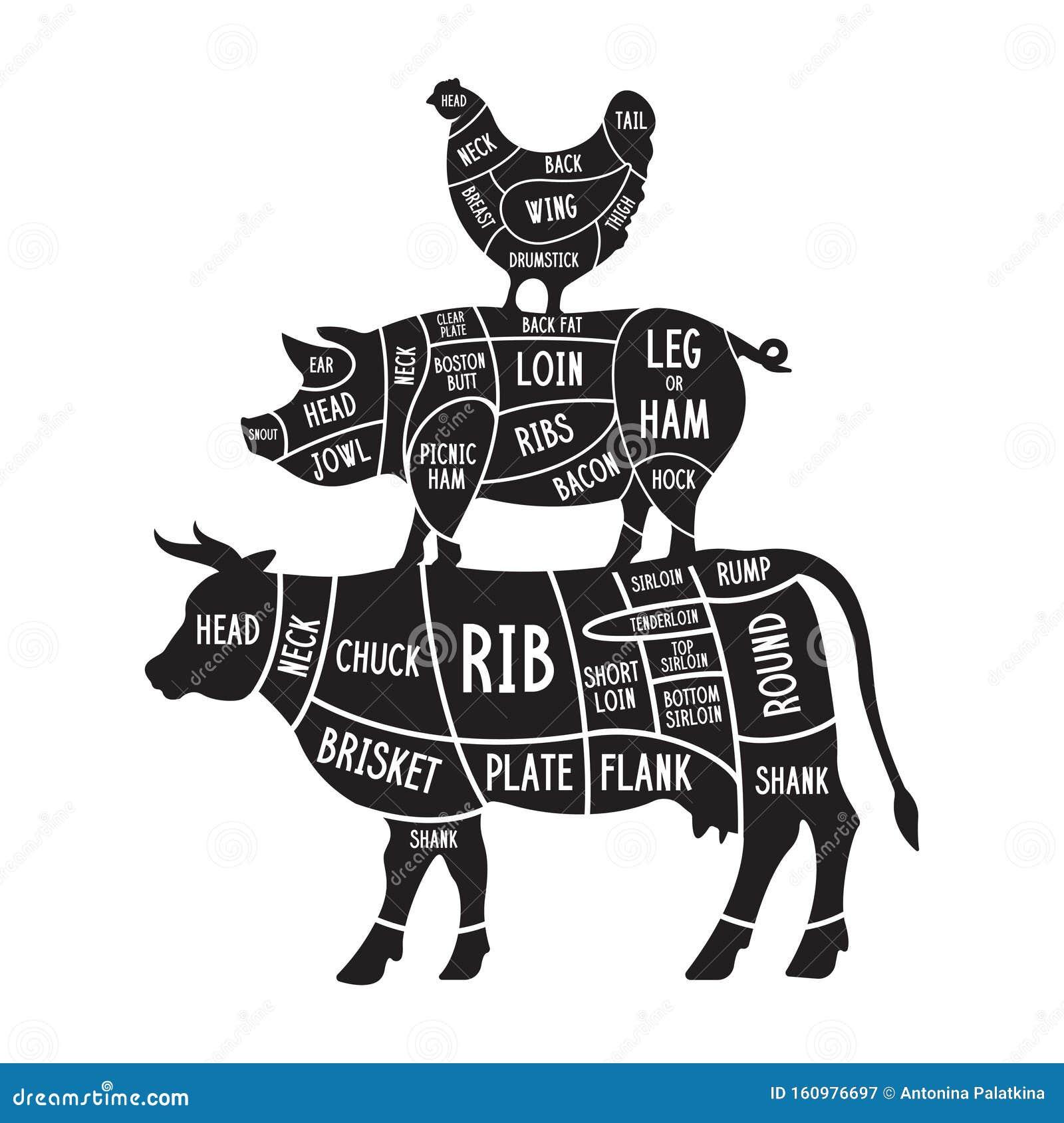 Pig Hen PNG and Pig Hen Transparent Clipart Free Download. - CleanPNG /  KissPNG