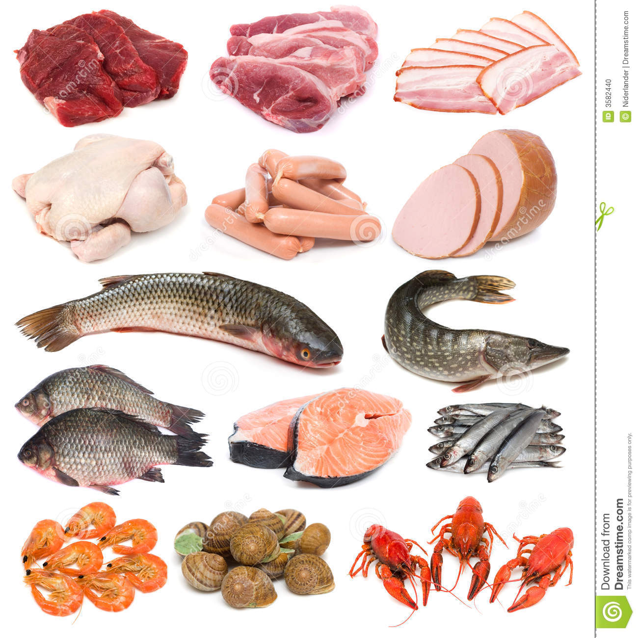 Meat fish and seafood stock photo image 3582440 for Is fish meat