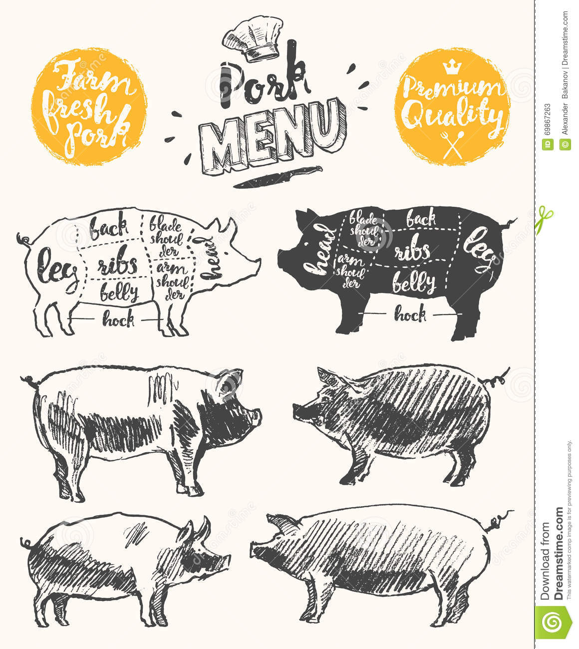 Meat Menu Template Scheme Pork Cuts Drawn Vector Stock Vector ...