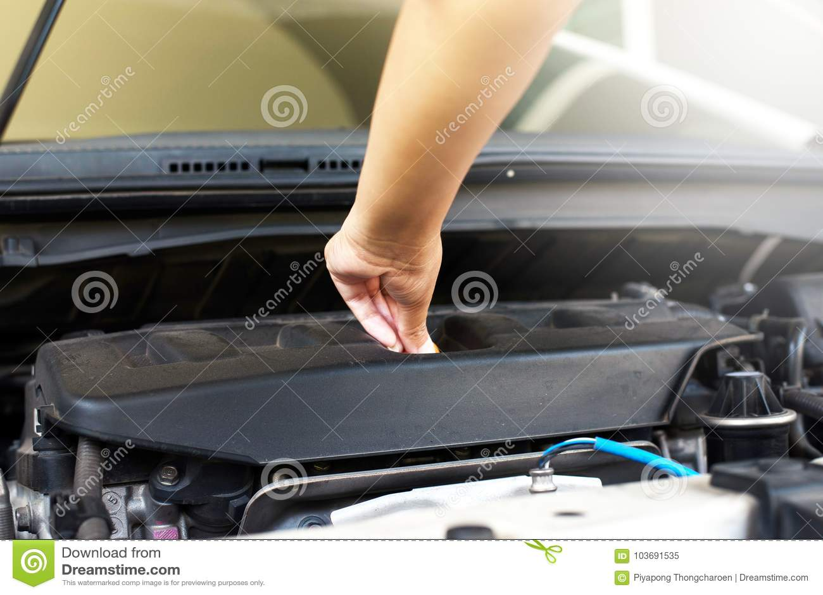 Mechanic changing oil mechanic car