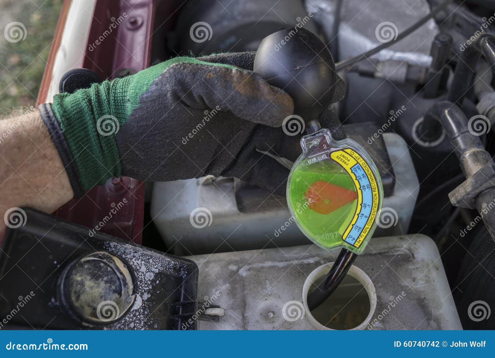 How To Check Antifreeze >> Mechanic Checking Strength Of Antifreeze Stock Photo Image