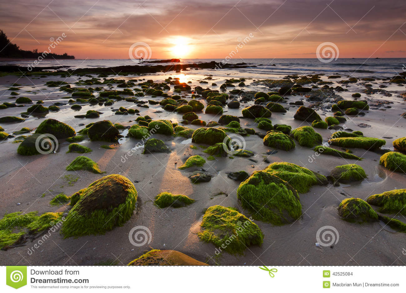 Mechate skały przy plażą w Kudat, Sabah, Wschodni Malezja