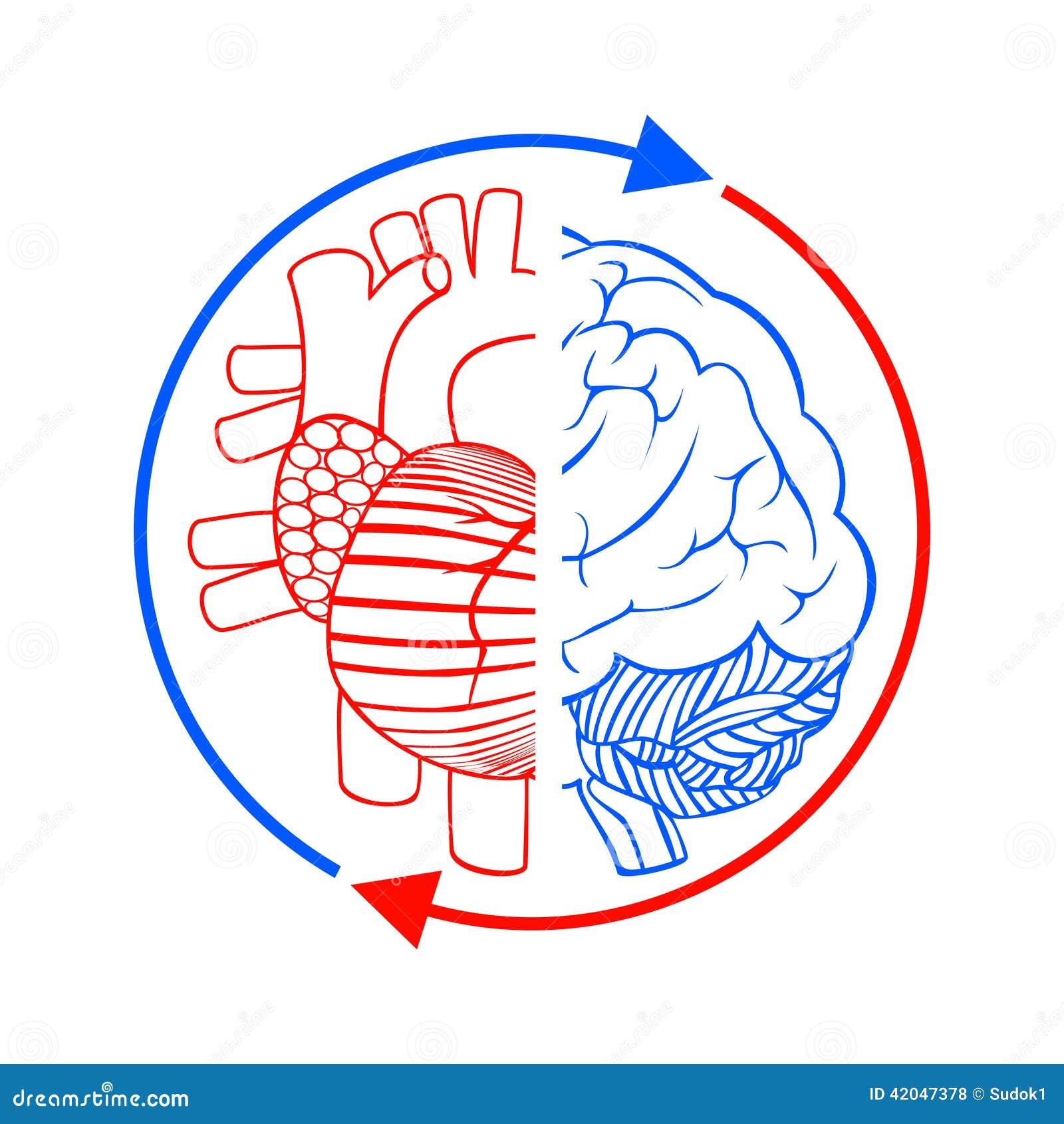 Mededeling De Hersenen En Het Hart Stock Illustratie