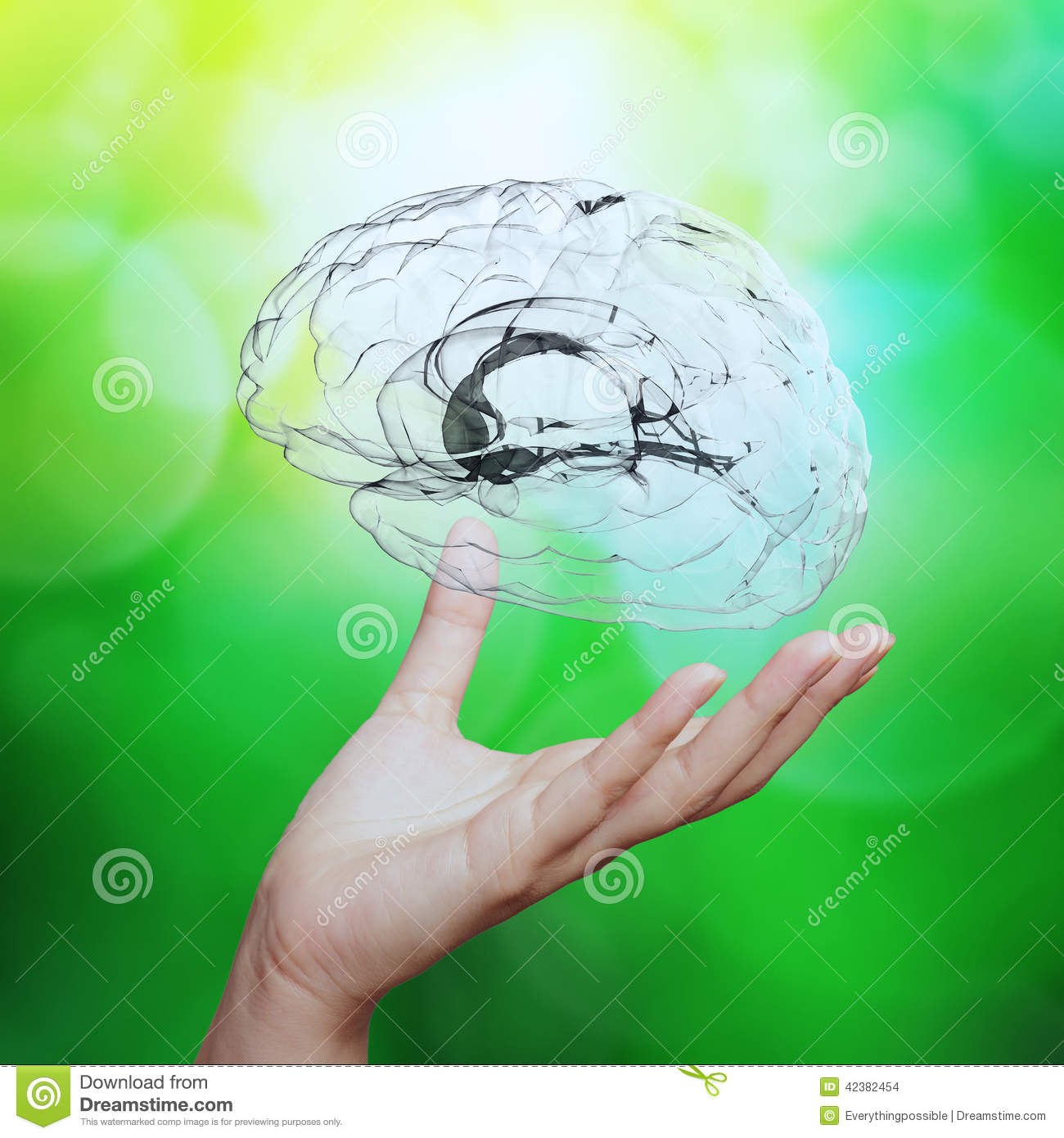 a description of the nature of the human brain The published paper, in nature biotechnology, fills in details about how successfully the human organoid integrated into the mouse brain and addresses one of those concerns: at least in the tests .