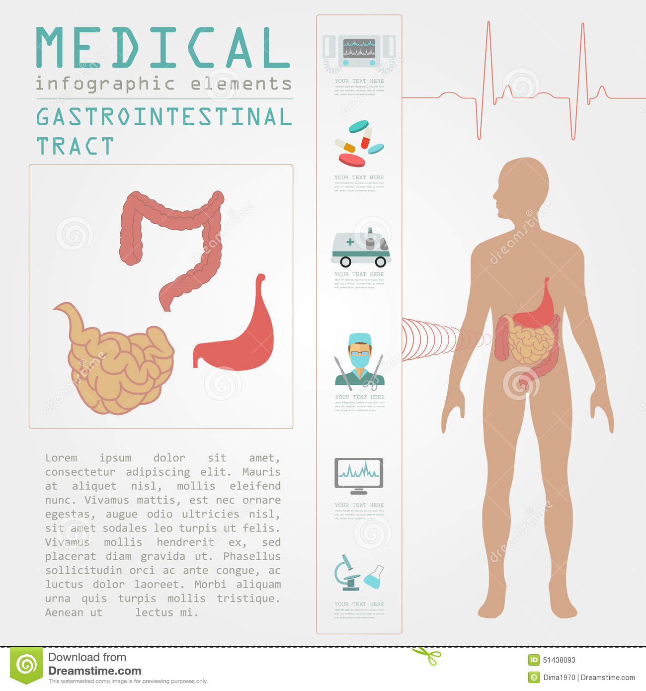 Medical and healthcare infographic, gastrointestinal tract infographic