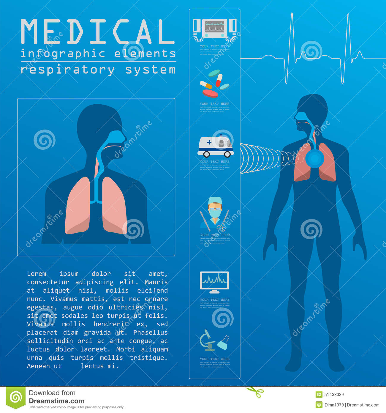 diagram of muscles of the body medical and healthcare infographic respiratory system the body system diagram #10