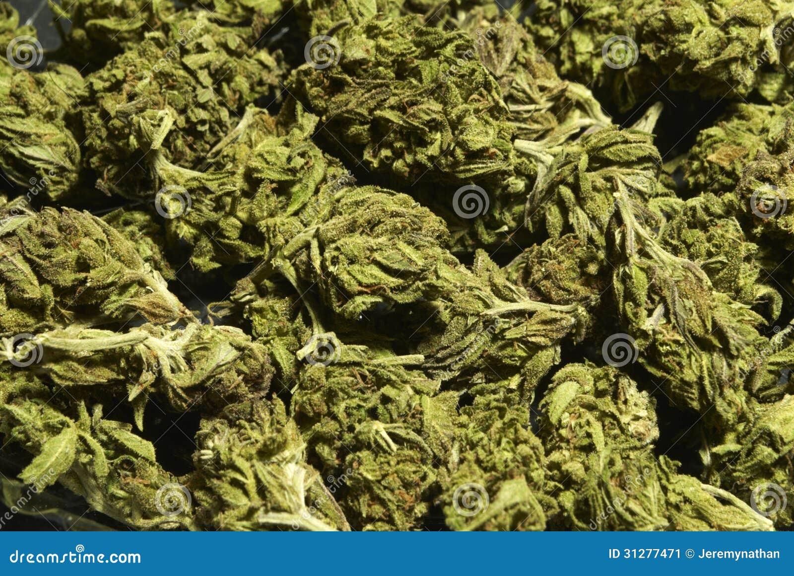 Medical Marijuana Background Stock Image Image 31277471