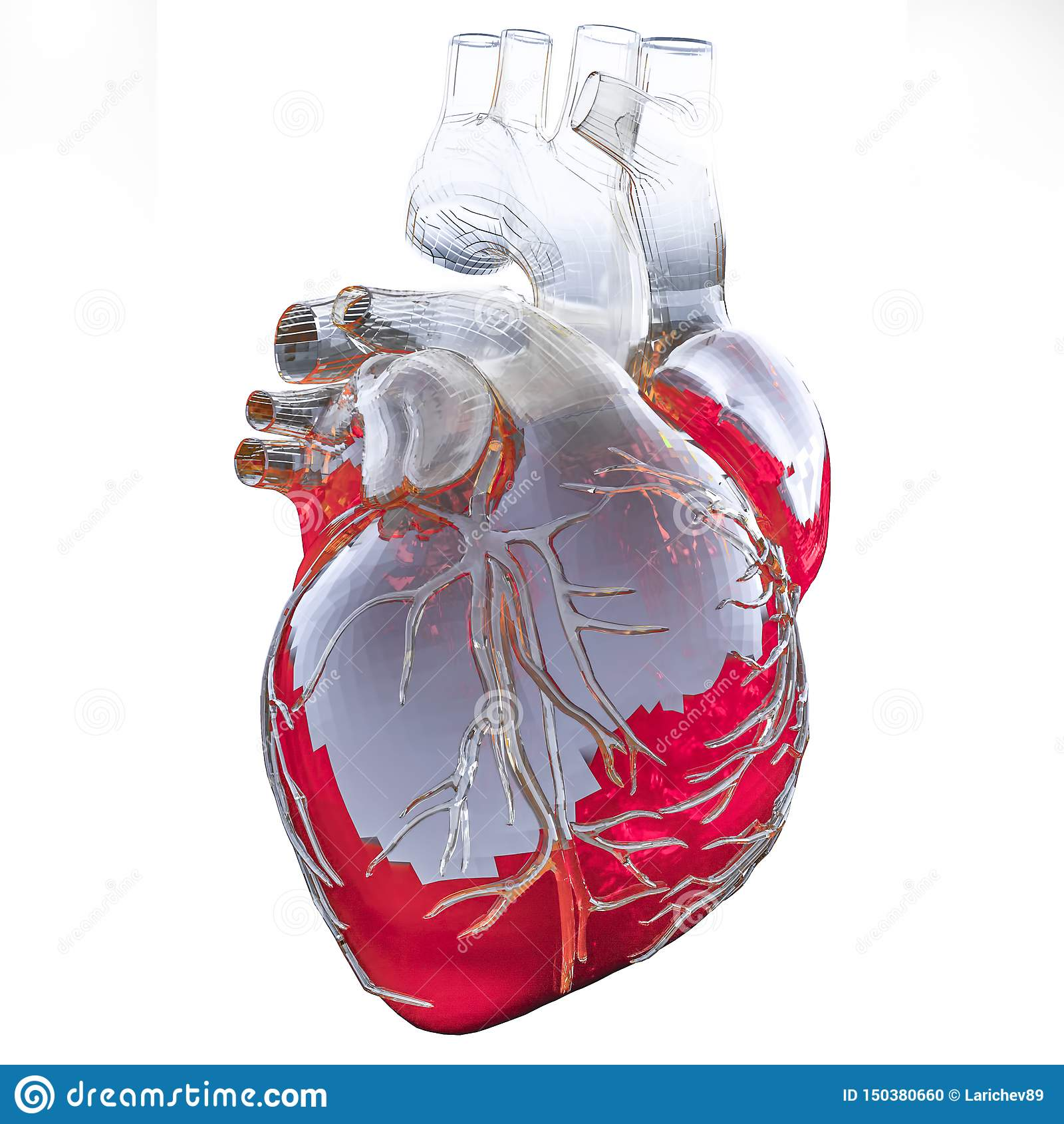 Medically accurate illustration of an artificial heart. 3D illustration