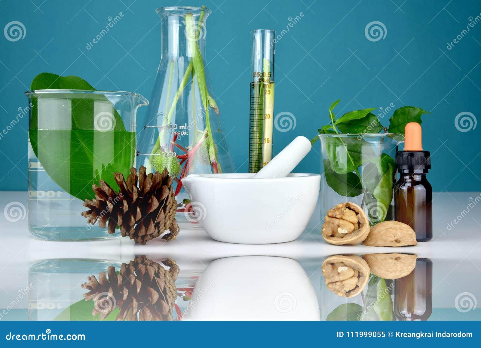 Medicina y atención sanitaria orgánicas naturales, medicina alternativa de la planta