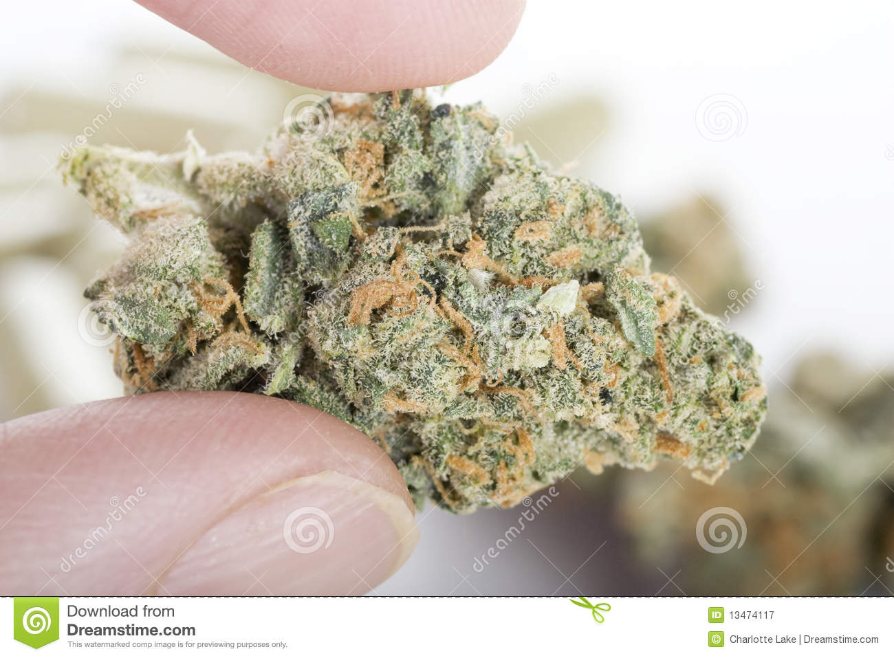 medicinal marijuana Find medical marijuana doctors near you today search our database of  hundreds of doctors, see their info, costs and reviews.