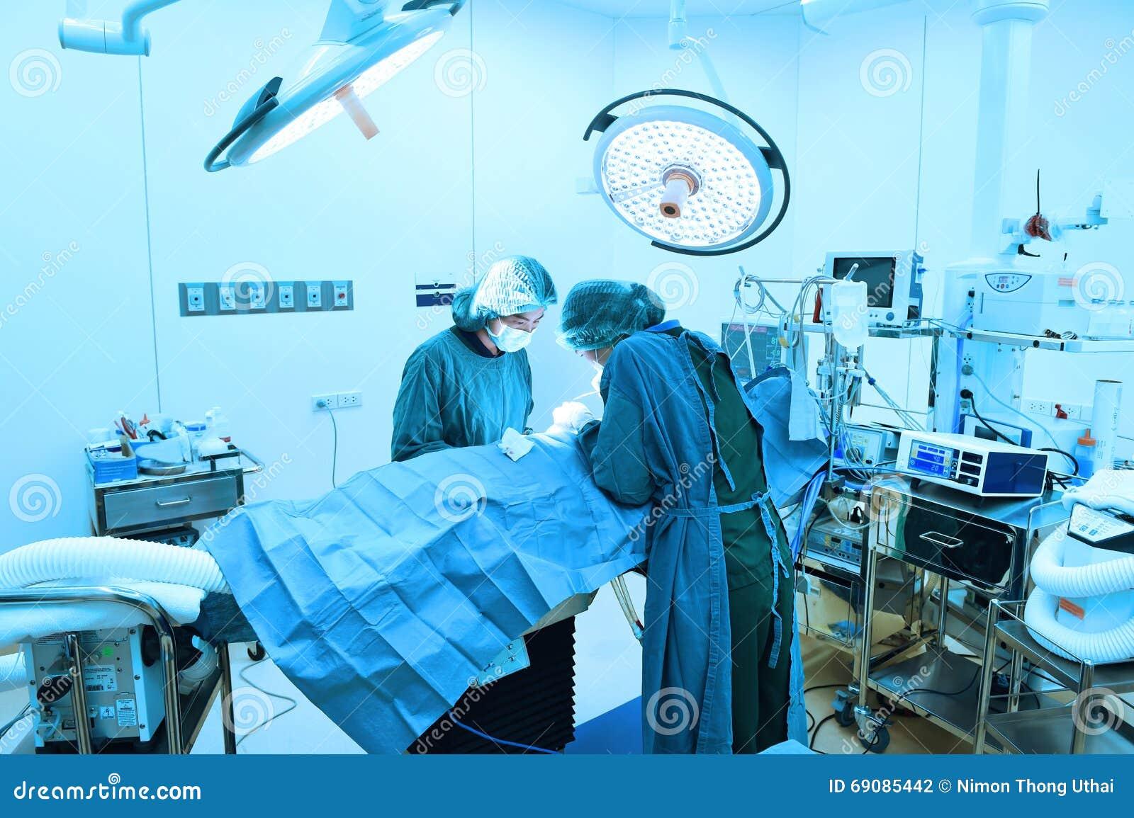 Medico di due veterinari che lavora nella presa della sala