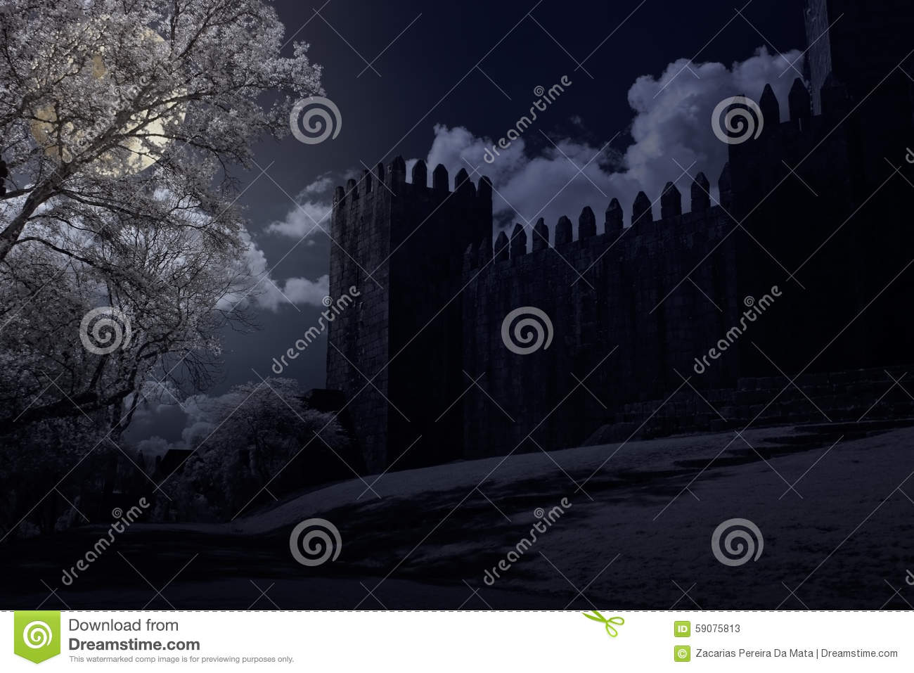 Medieval castle in a full moon night