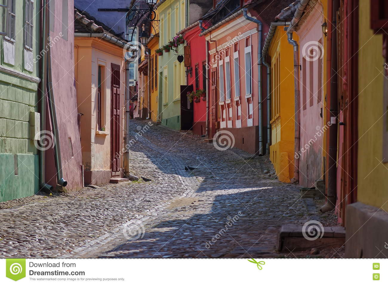 Medieval colorful street in Sighisoara, Romania