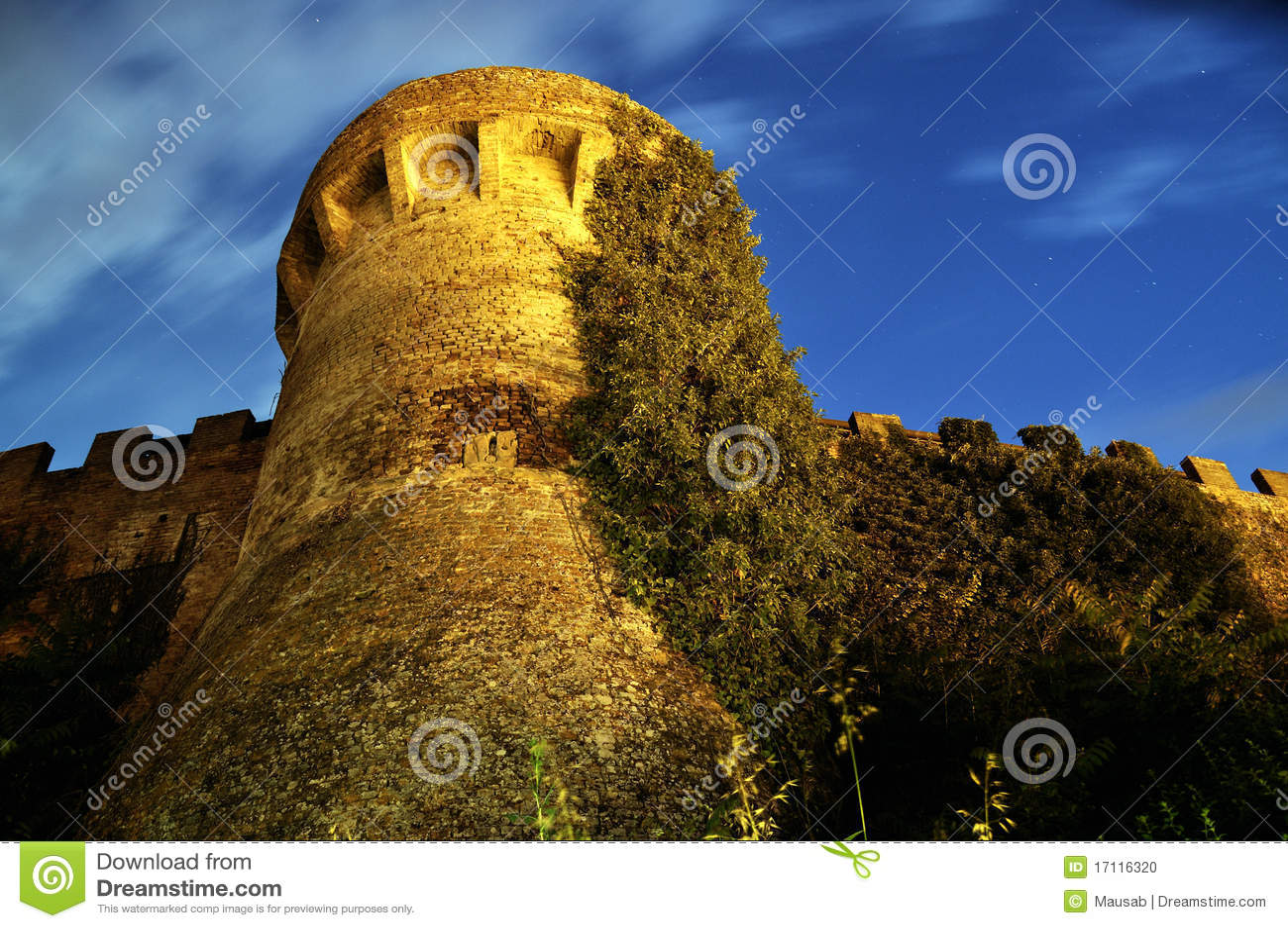 Medieval Tower (Certaldo)