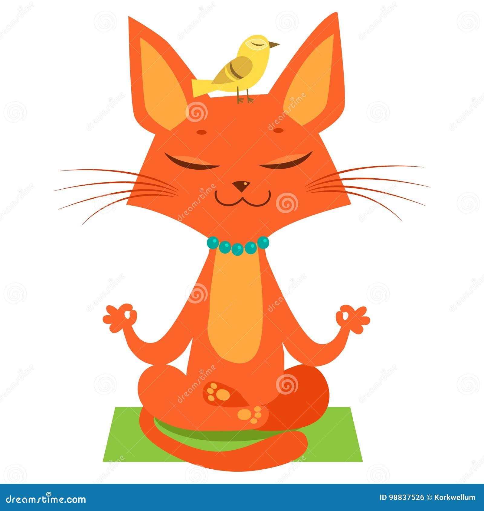 Meditando A Ioga Cat Vetora Desenhos Animados Engracados Cat