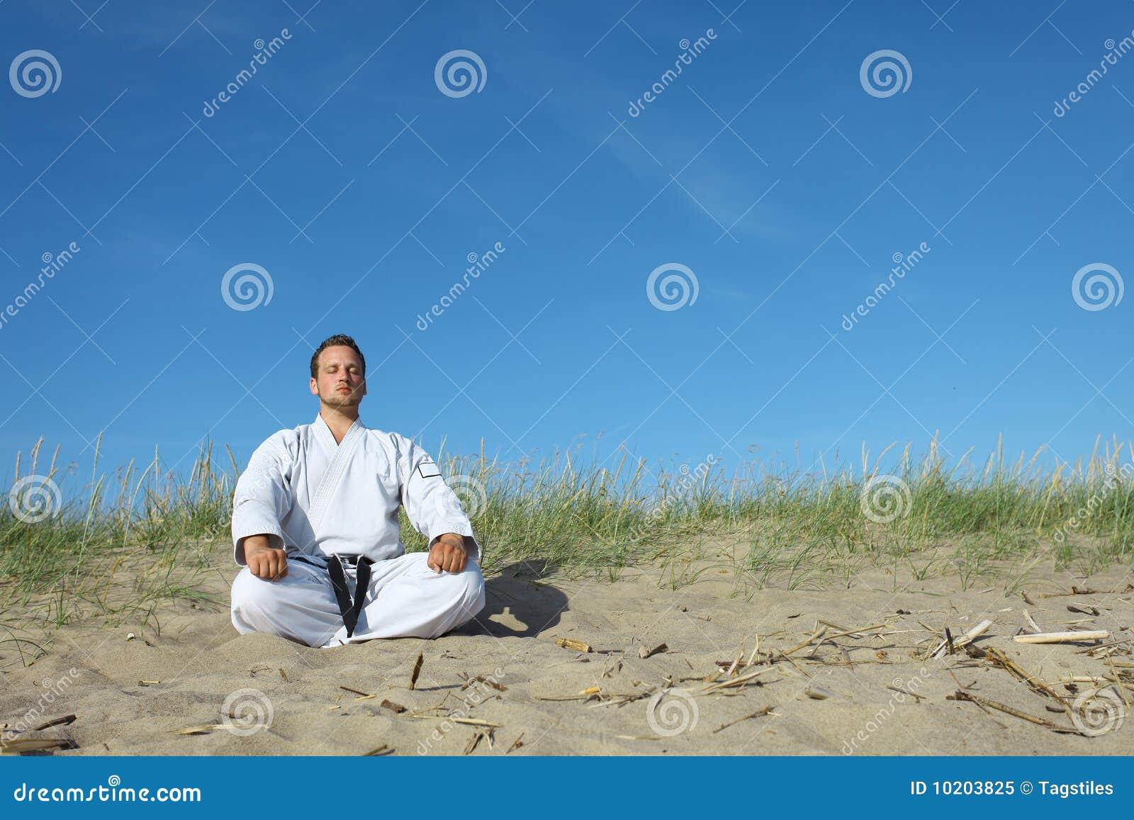 Download Meditation stockbild. Bild von athlet, aktiv, verteidigung - 10203825