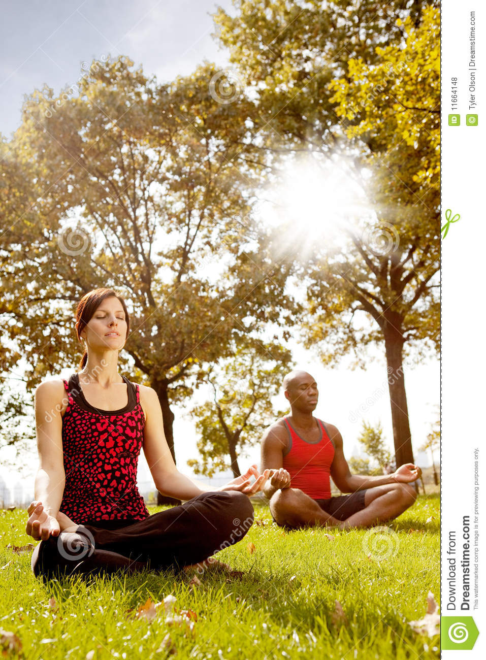 Young Woman Meditating On Forest Rock. Stock Photo - Image