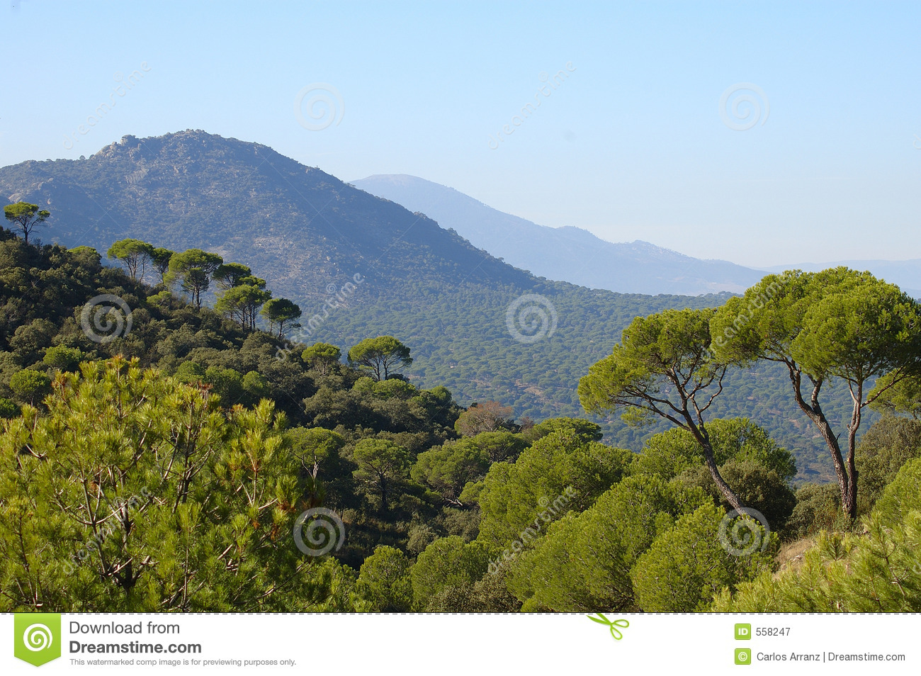 mediterranean landscape royalty free stock photography image 558247