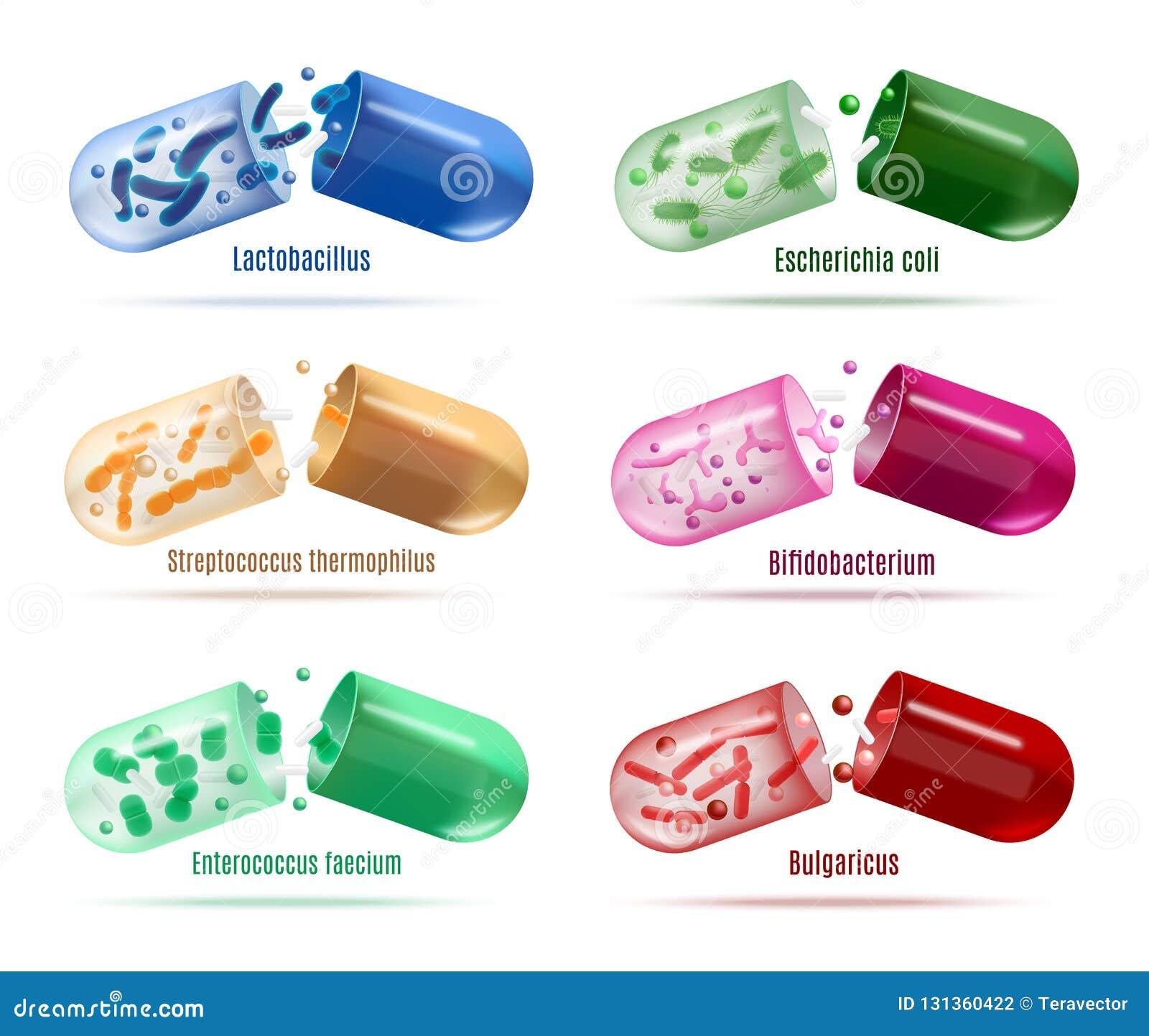 Medizin mit Probiotics-Bakterien-Vektor-Satz