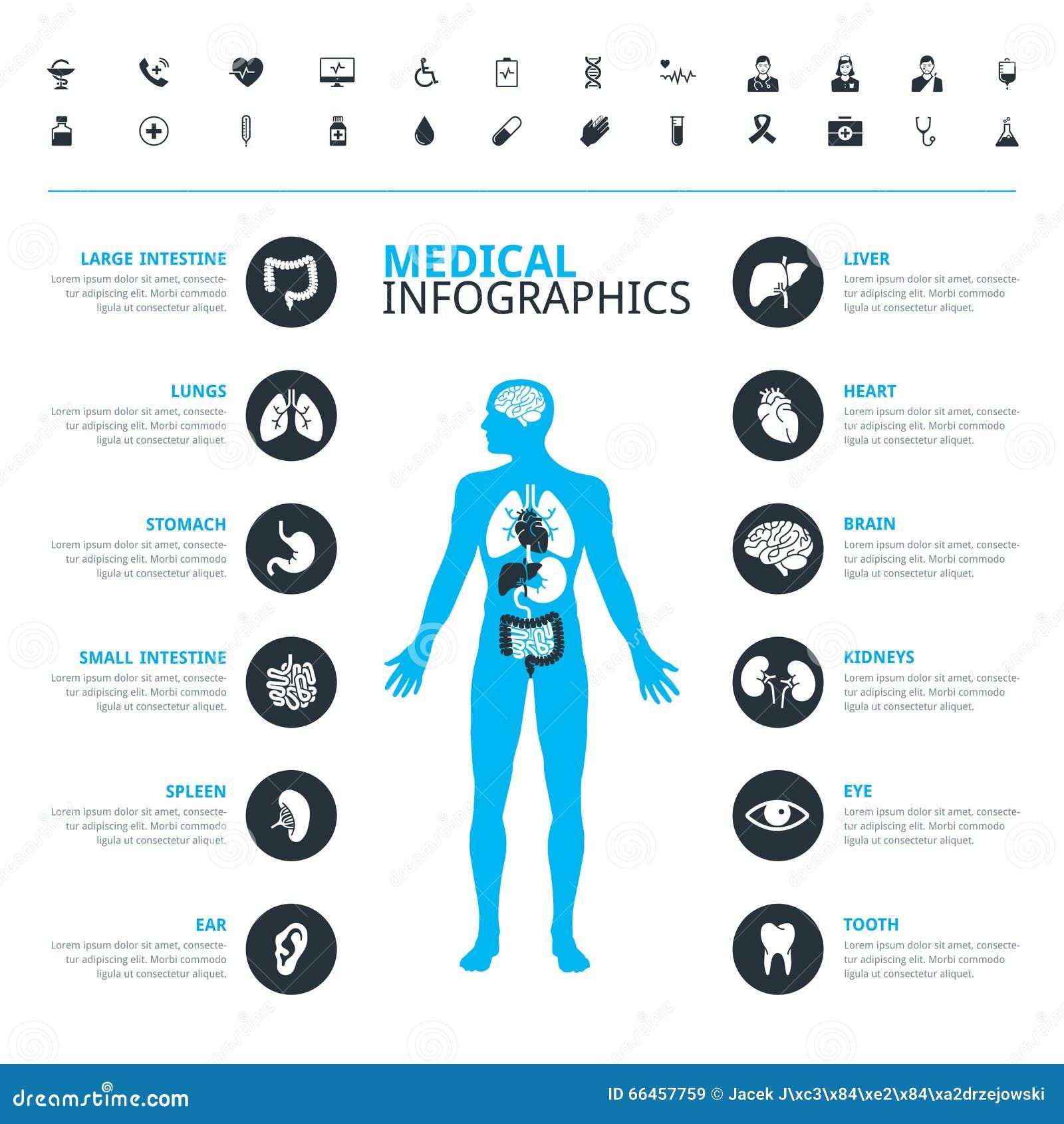 Medizinische menschliche Organe und medizinische Ikone stellten mit menschlichem Körper ein