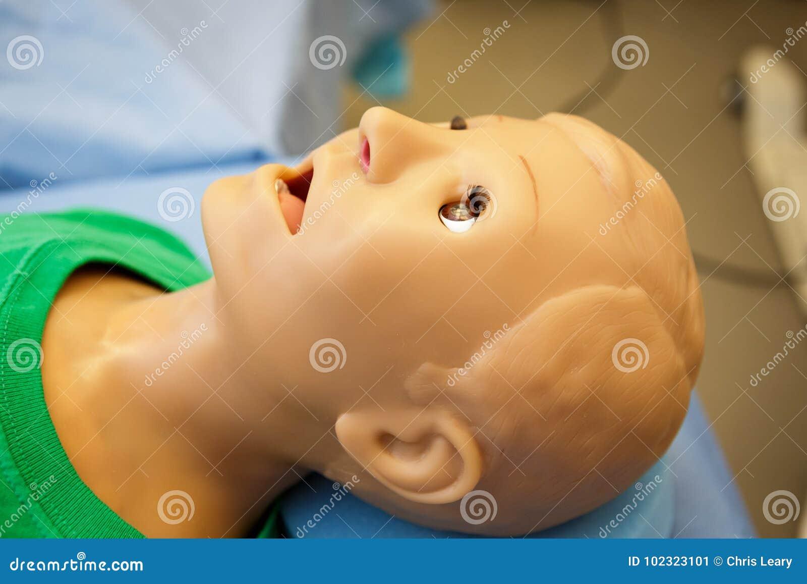 Medizinisches Mannequin