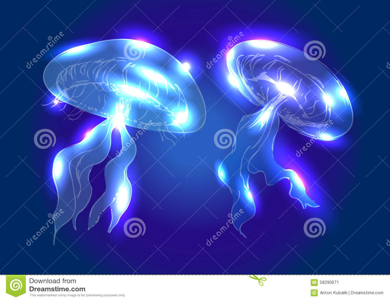 Medusa da ilustração do vetor