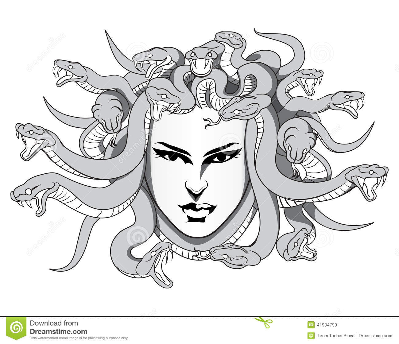 medusa stock illustrations u2013 1 933 medusa stock illustrations