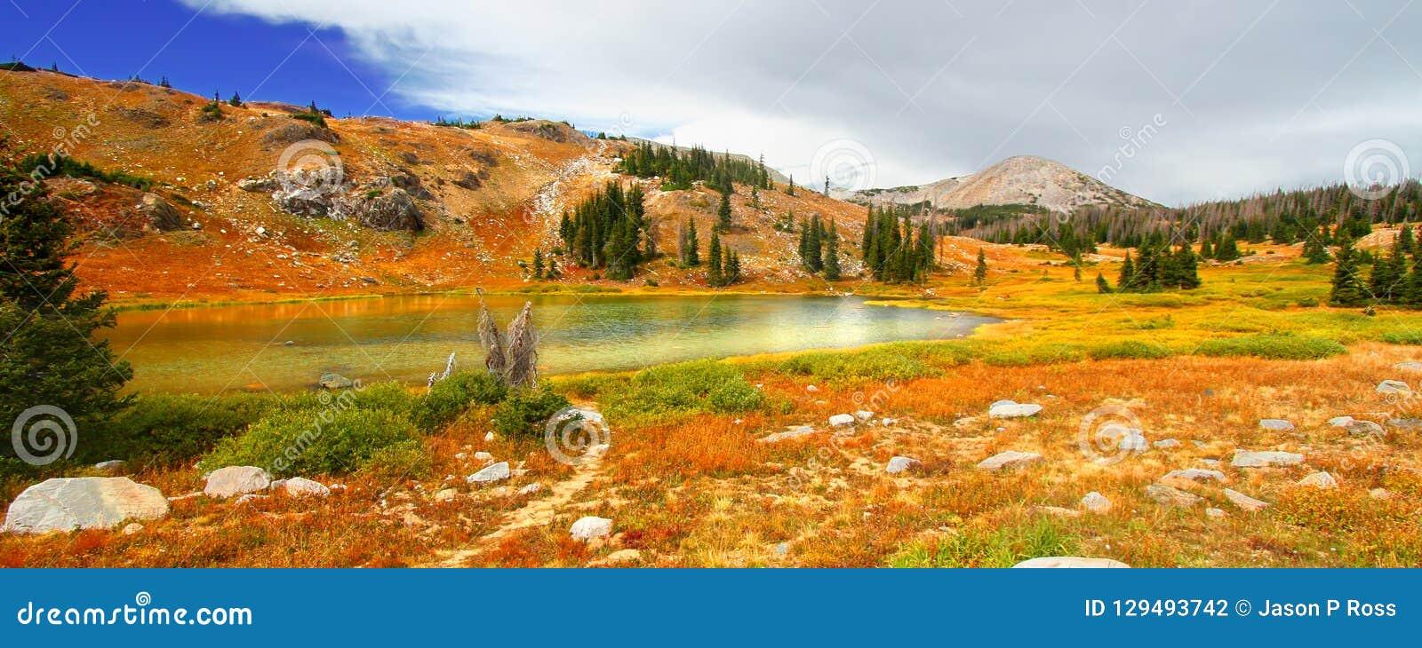 Medycyna łęku Jeziorna sceneria Wyoming