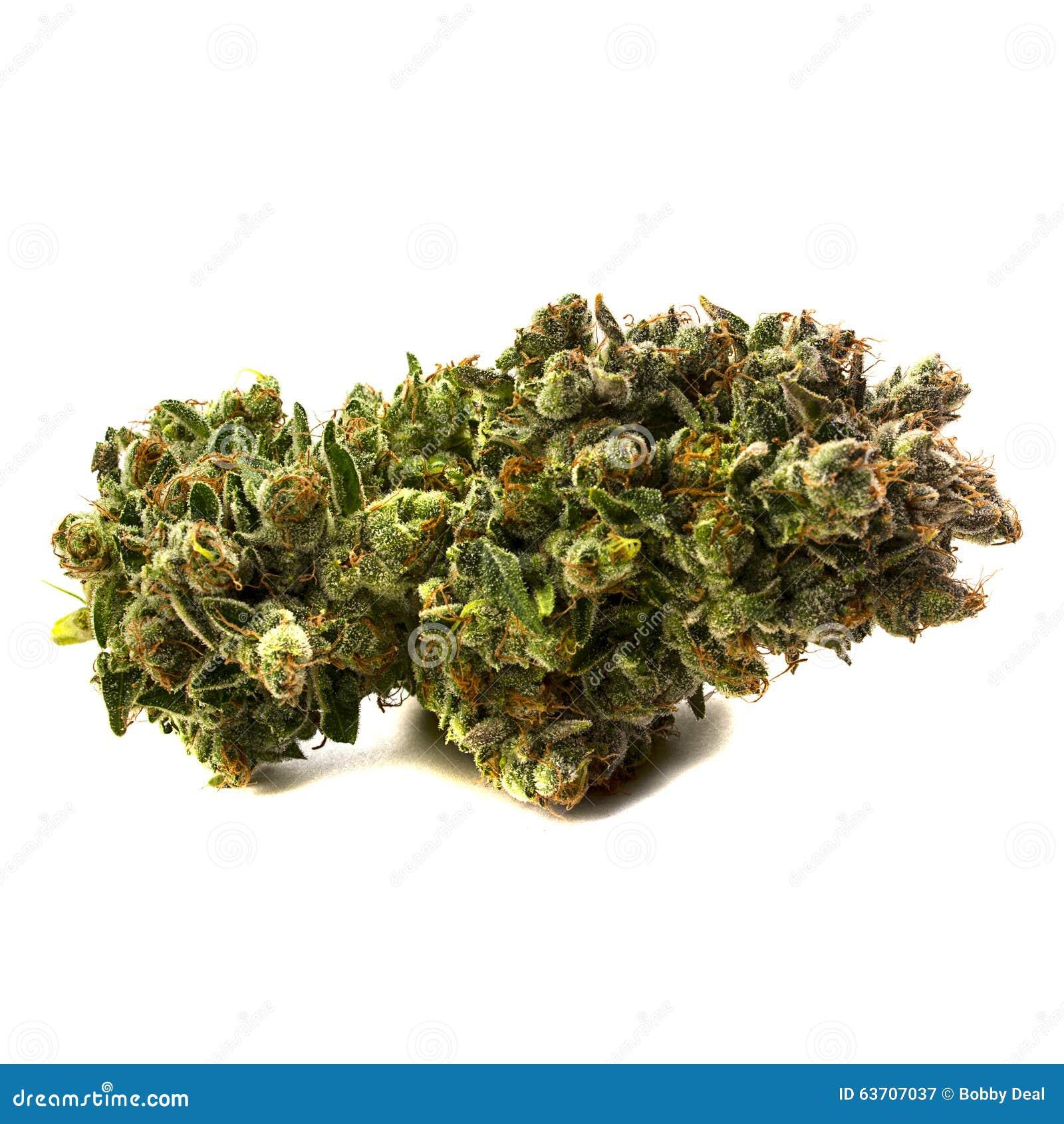 Medyczna marihuana 2