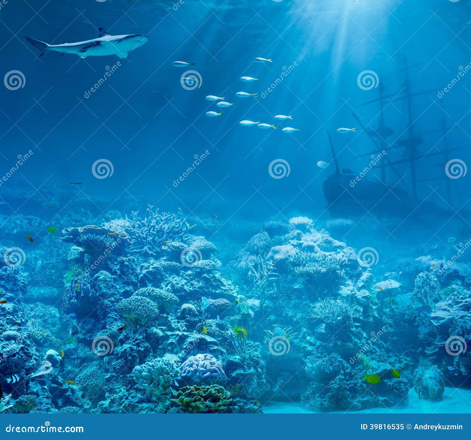Meer oder Ozean Unterwasser, Haifisch und gesunkene Schätze