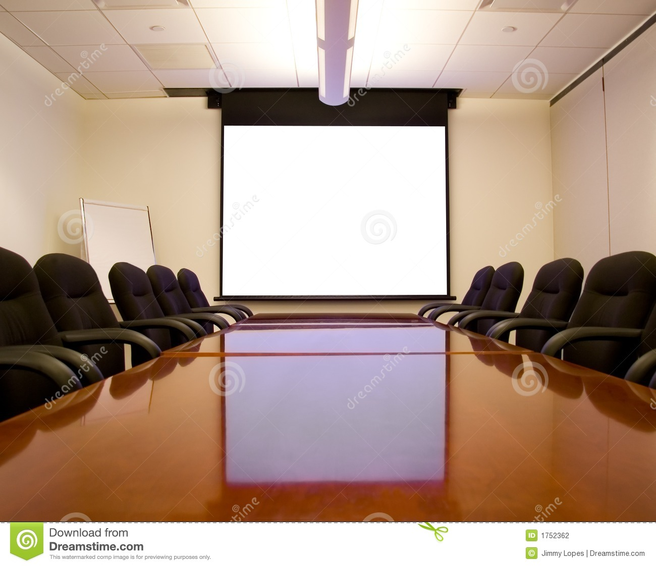 Conference Room Projector Screen