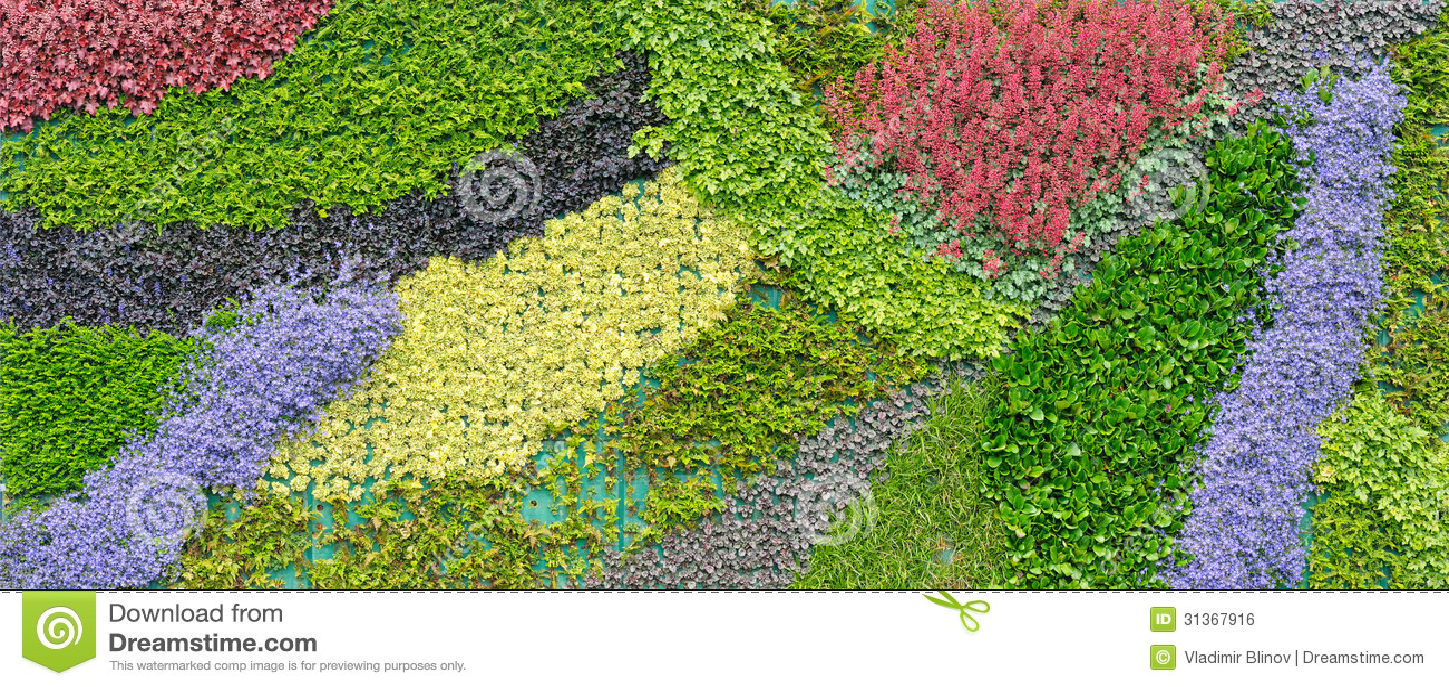 Mehrfarbiger Teppich Von Lebenden Pflanzen Lizenzfreies