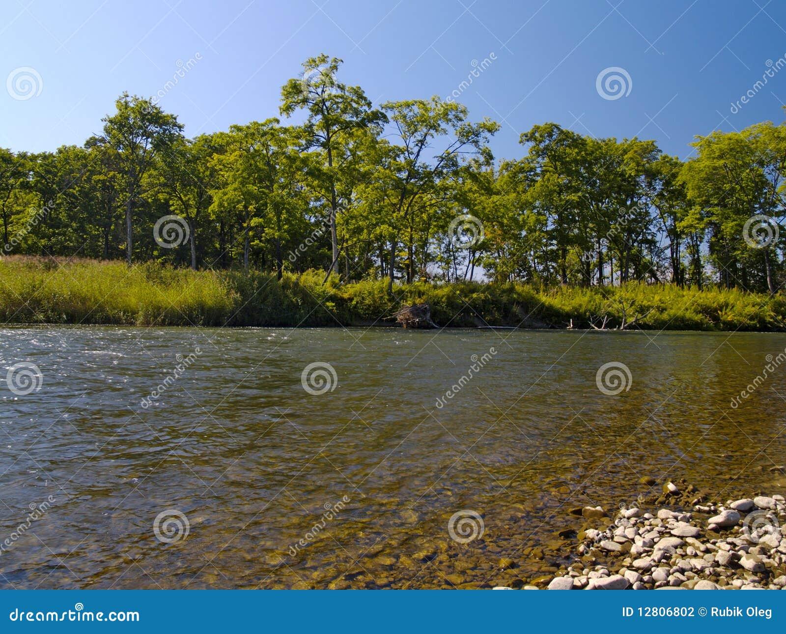 Meio-dia do verão no rio