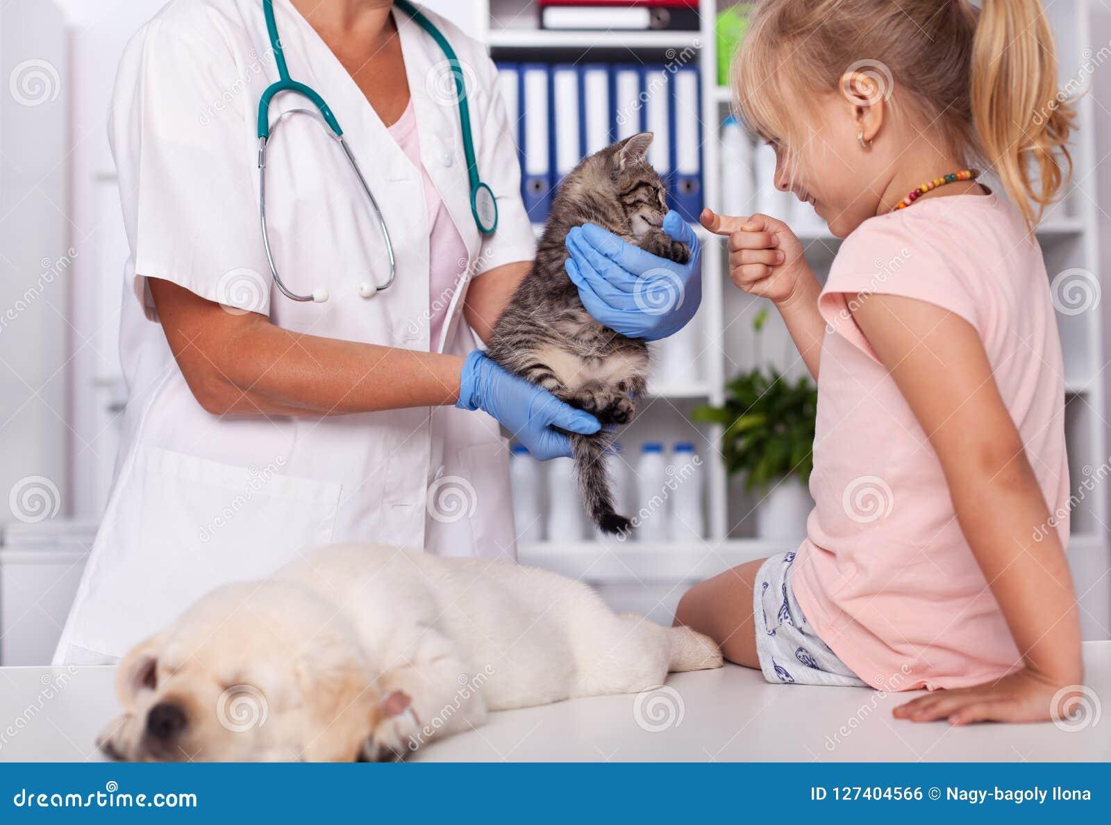 Meisje bij de dierlijke schuilplaats die de babydieren controleren
