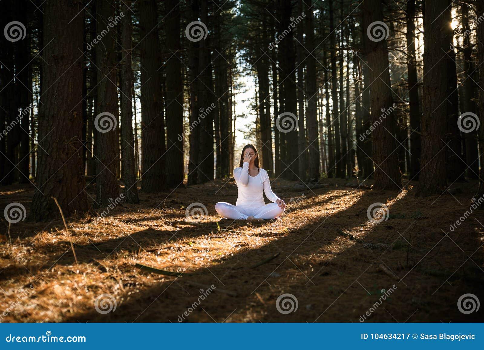 Download Meisje dat yoga doet stock afbeelding. Afbeelding bestaande uit serene - 104634217