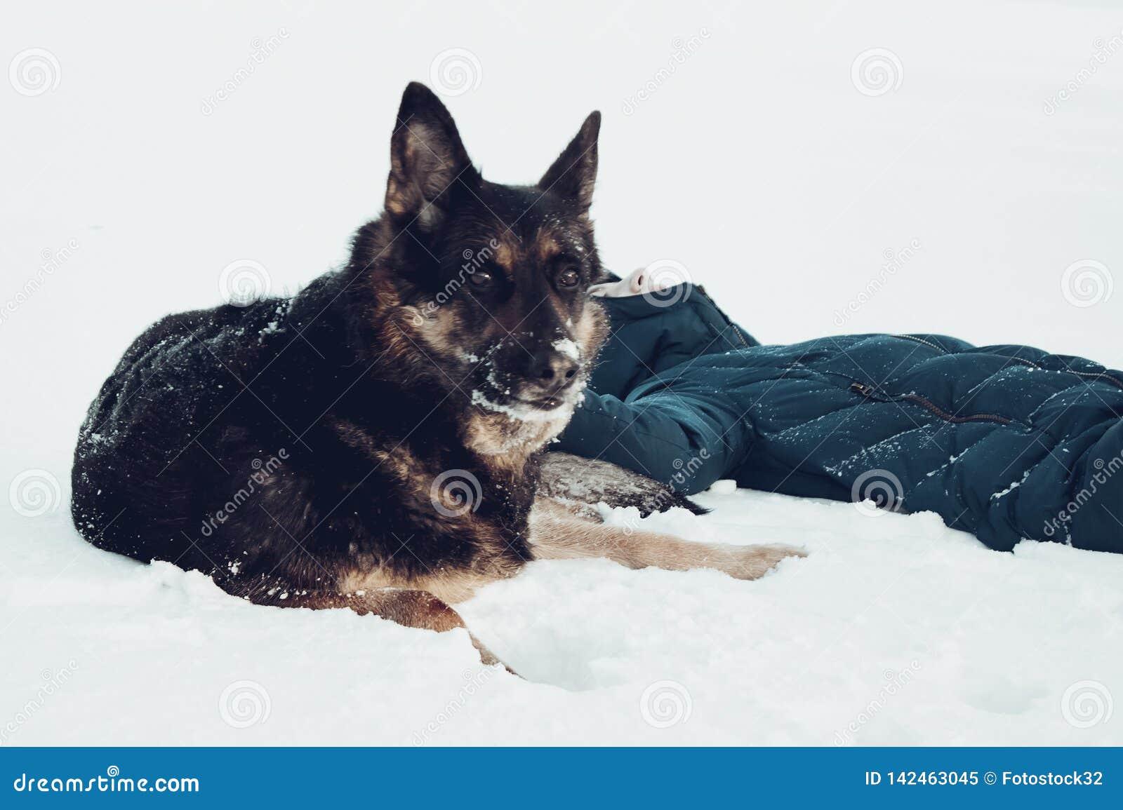 Meisje met een hond op de kust van een de wintermeer