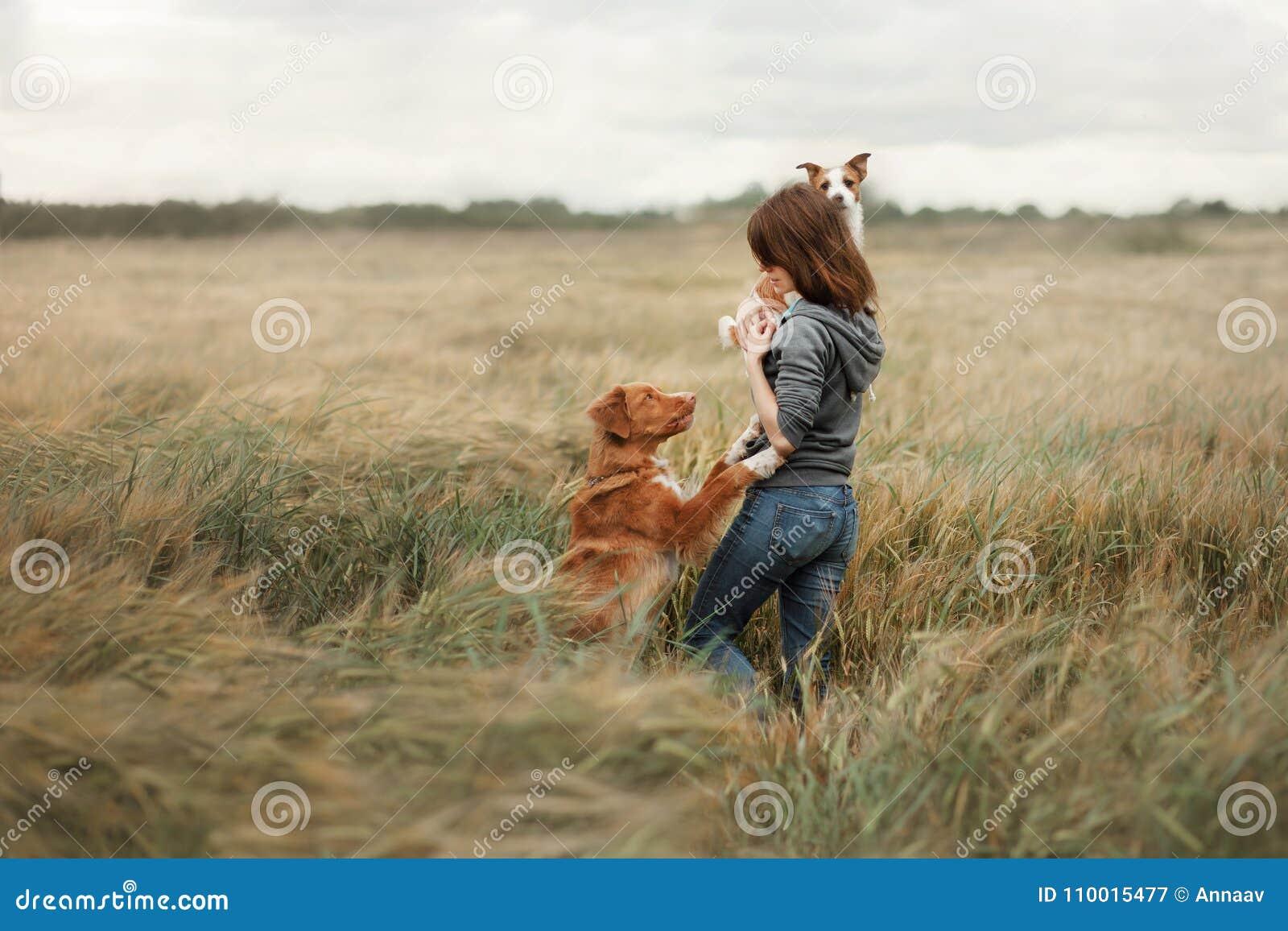 Meisje met honden op het gebied