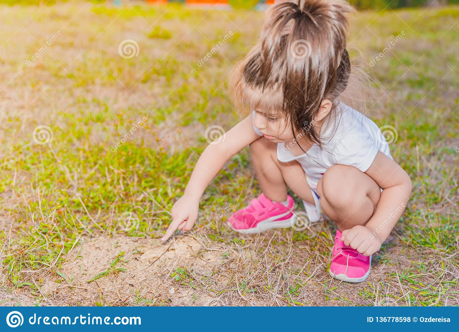 Meisje wat betreft kleine mieren met haar vinger op mier hil