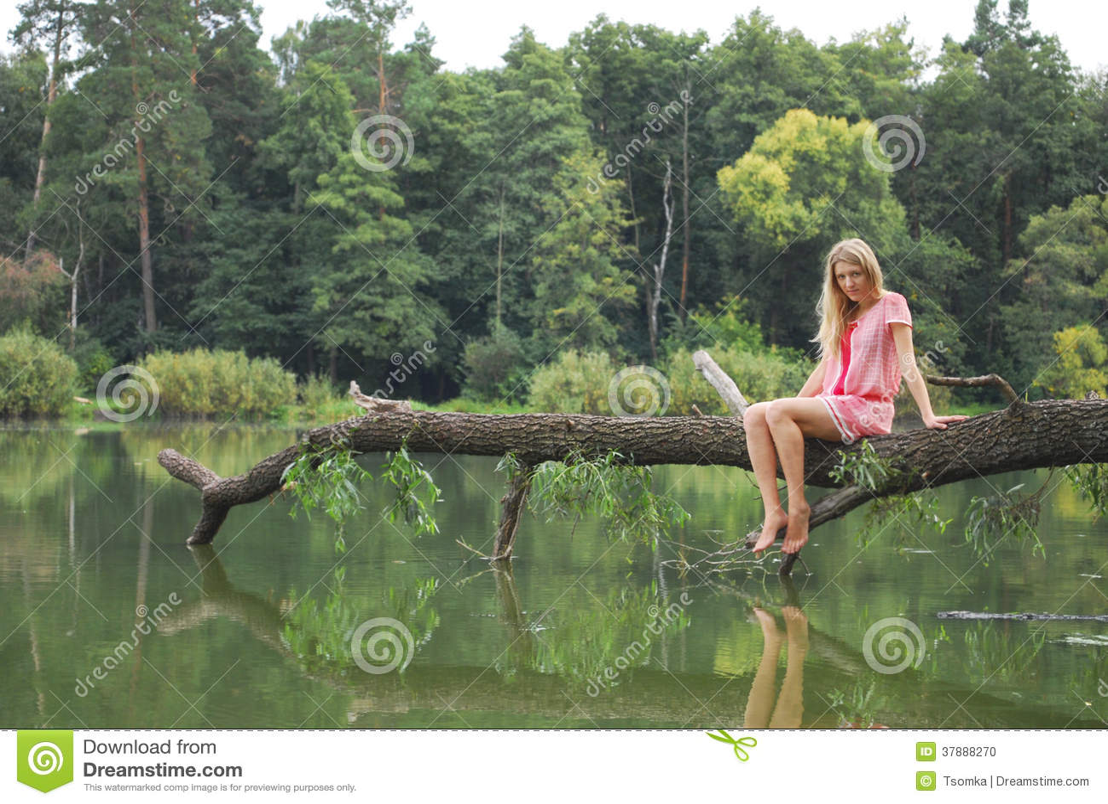 Meisjeszitting op de kust van het meer op de boom.