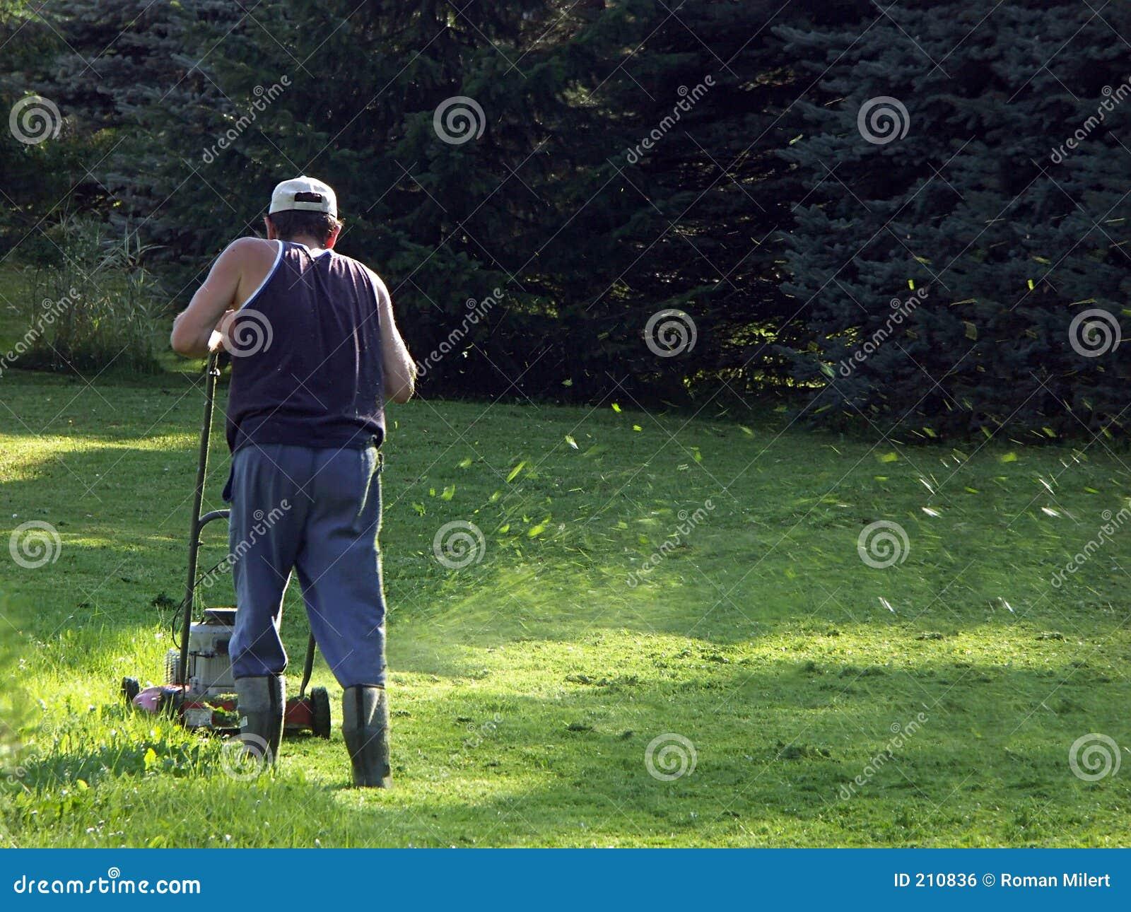 Meja för gräs