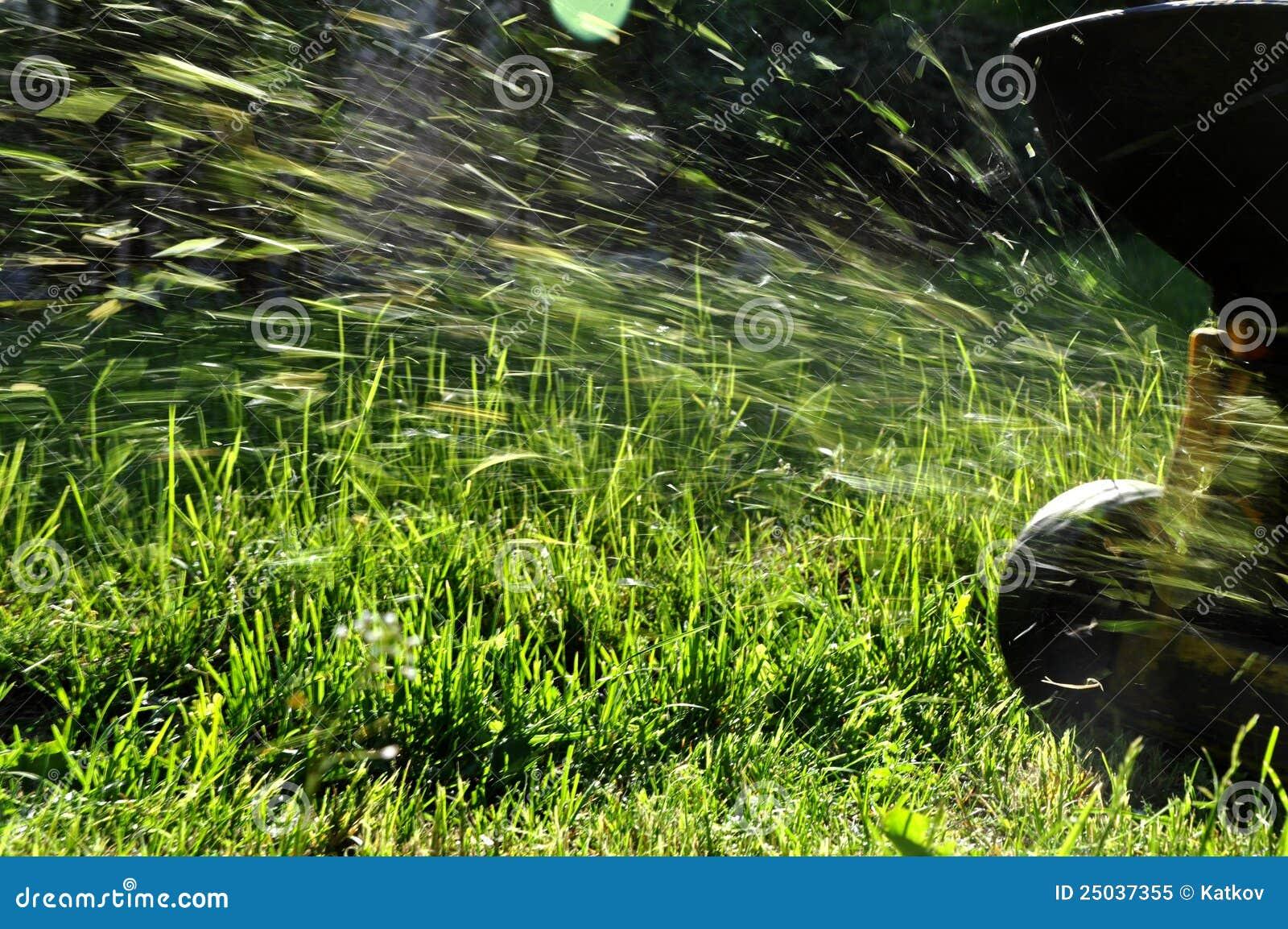 Meja för lawn