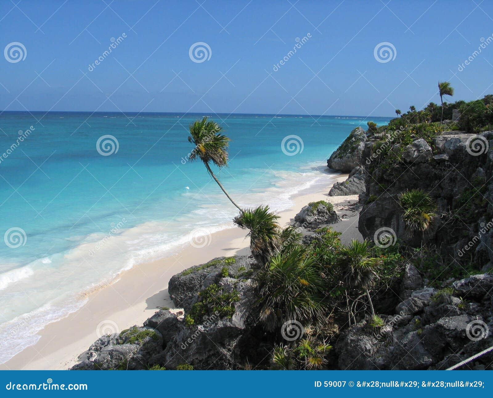 Meksykanin na plaży