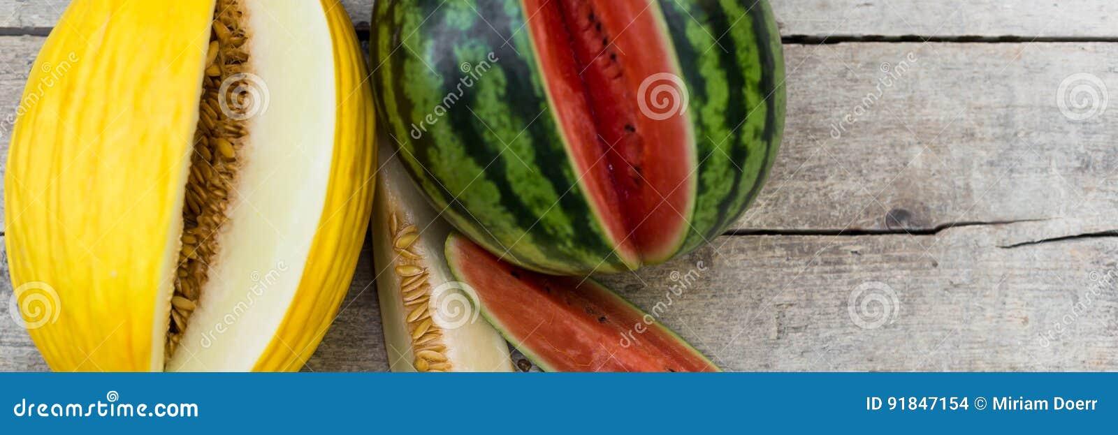 Melão da melancia e do canário