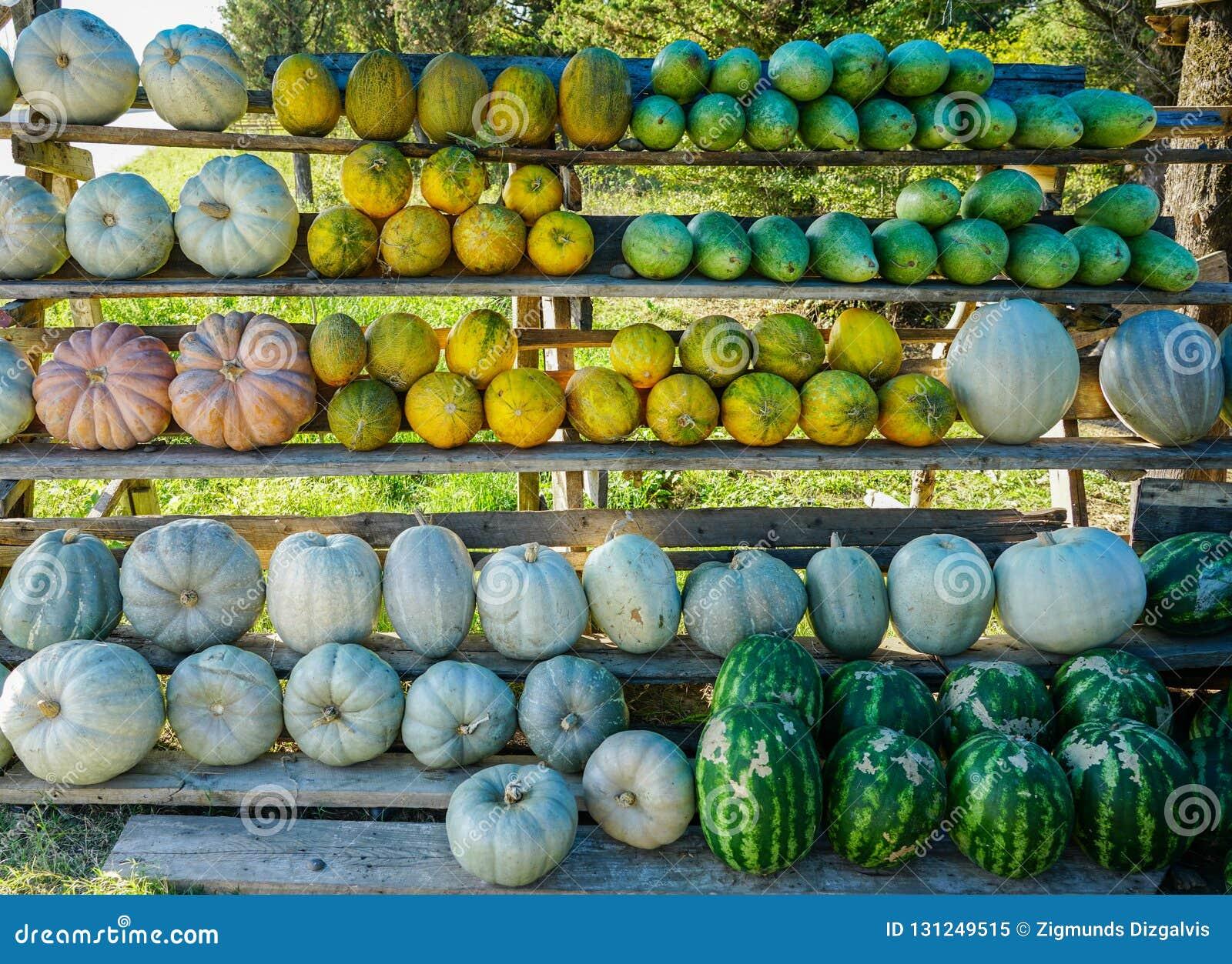 Melões, melancias e abóboras no mercado da borda da estrada
