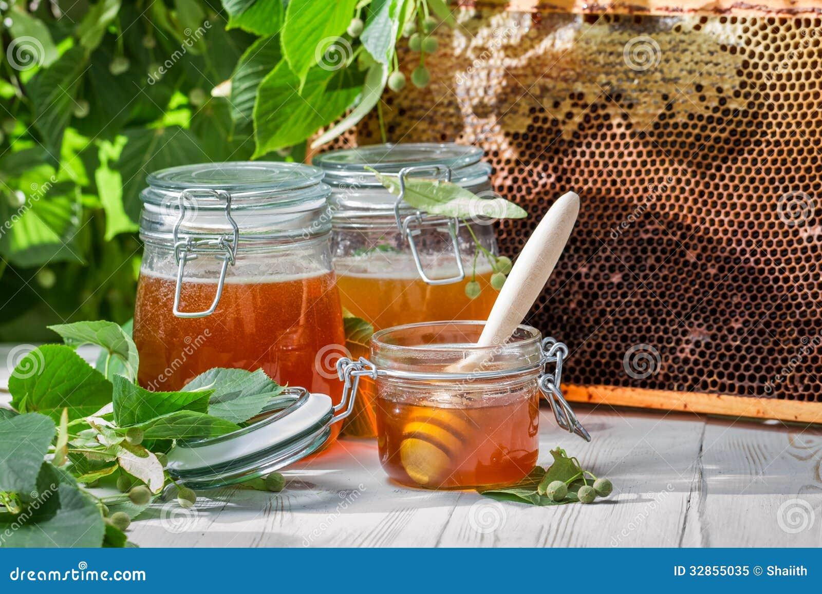 Mel em um frasco e em um favo de mel no fundo de árvores de Linden