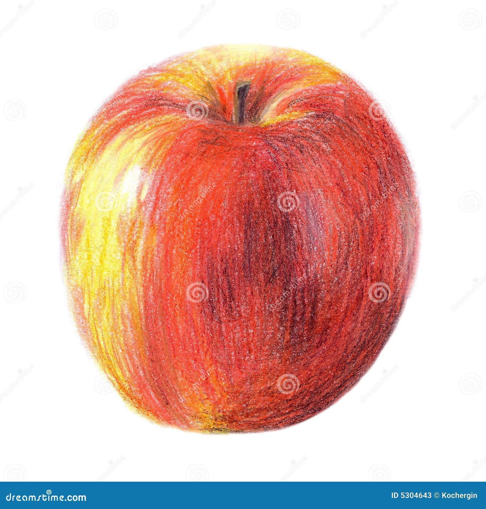 Download Mela di tiraggio illustrazione di stock. Illustrazione di mela - 5304643