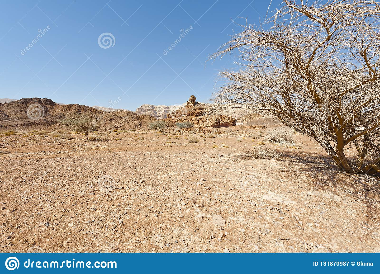 Melancholie en leegte van de woestijn in Israël